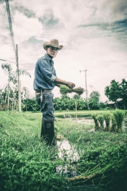Professional Photographer Scott Lumley Takes a Field Trip to Rice Farming with We Learn Thai Chiang Mai 378