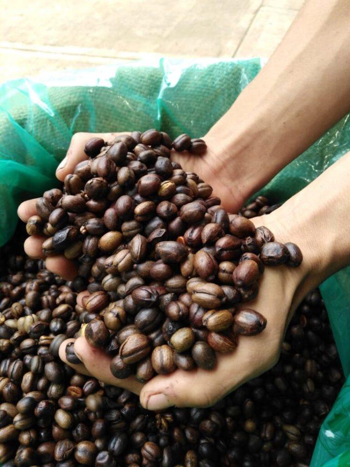 Café natural honey.