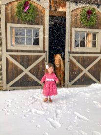 Holiday Photos on The Farm at SummitWynds