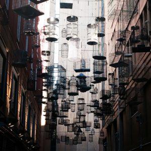 Sydney. CBD. Australia.
