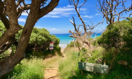 SA - VIC Great Ocean Road