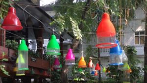 Cabbages & Condoms. Bangkok. Thailand.