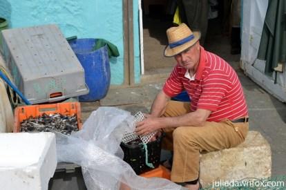 Fisherman preparing bait, Angeiras