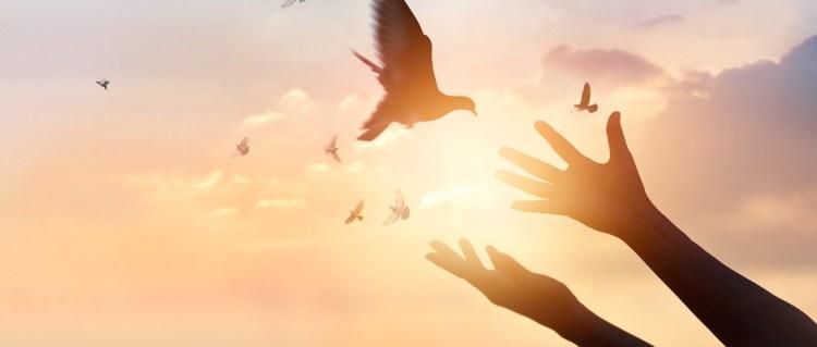 Las etapas del duelo: La aceptación – El Ángel