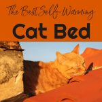 Self Warming Cat Beds Best Heated Cat Bed