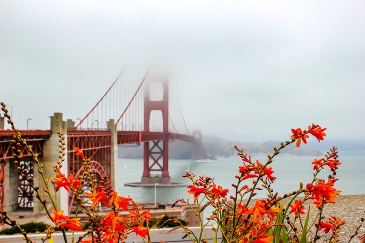 Fog covers Golden Gate Bridge, San Francisco, California