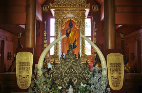 Elephant tusks and Buddha Statue in temple at Doi Suthep in Chiang Mai, Thailand