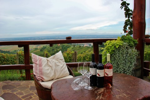 Bottles of Slovenian Wine at Hisa Vina Cuk