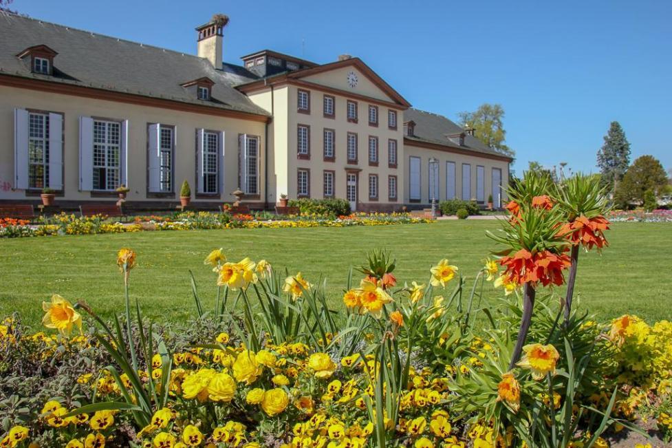 Spring flowers at Josephine Pavilion at Parc de l'Orangerie in Strasbourg, France