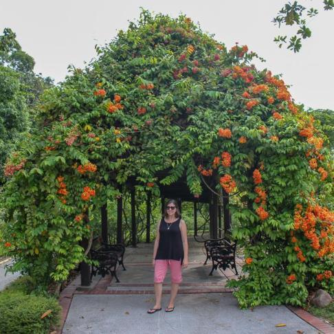 Foliage covered walkway at Perdana Botanical Garden in Kuala Lumpur, Malaysia