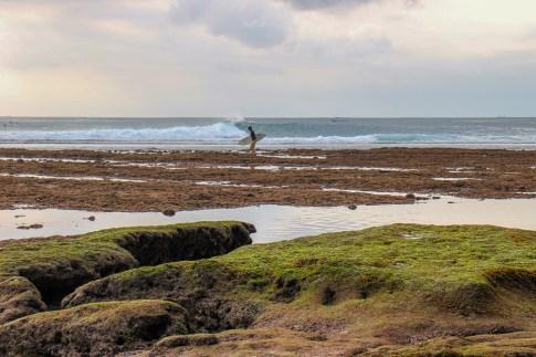 Surfer walks across the reef at Blue Point Beach in Uluwatu, Bali, Indonesia