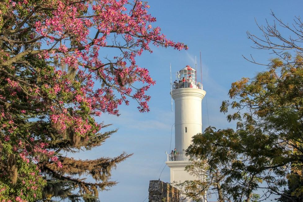 The Faro Lighthouse and pink blossoms in Colonia del Sacramento, Uruguay