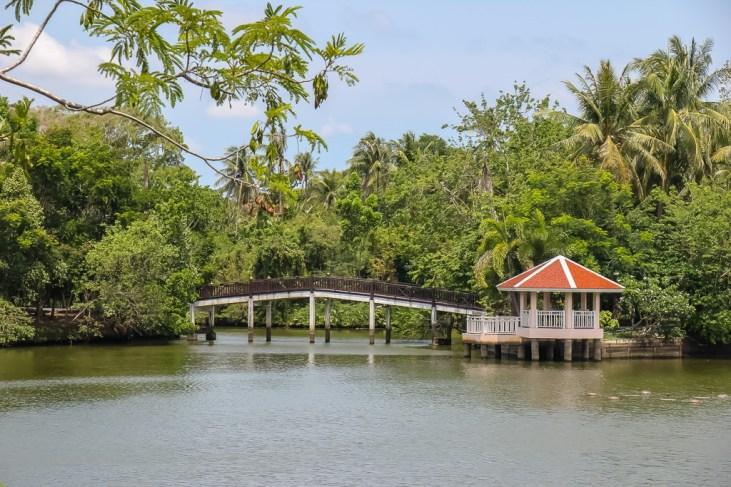 Bridge over lake at Bang Kachao Botanical Garden in Bangkok, Thailand