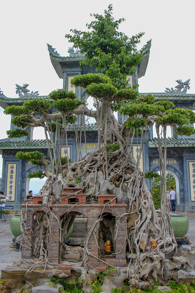Temple and tree as one, Son Tra Da Nang, Vietnam
