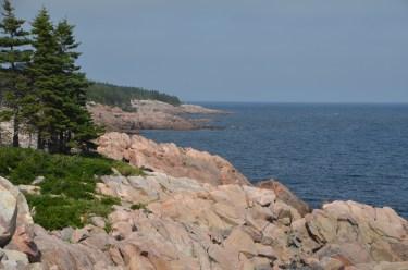 Looking north along the same shore