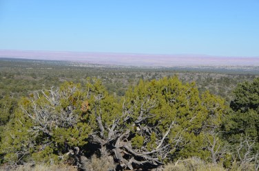 First views of the Painted Desert.