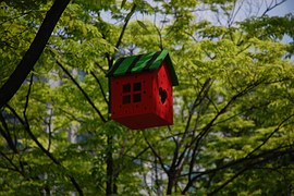 A red rectangular bird cage with green sloping roofs niched in a tree