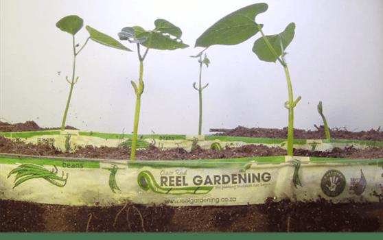 Seed System - Reel Gardening