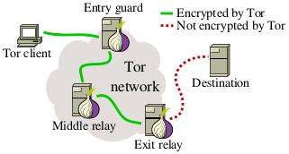 tor network2