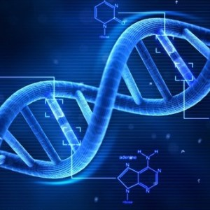 DNA Contains Instructions for Biological and Computer Viruses