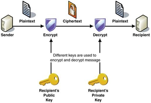 Cryptology for business and organizations on the 21st the reverse process of cryptography to obtain the plaintext from ciphertext is called cryptanalysis steganography is a mathematical function where a secret ccuart Choice Image