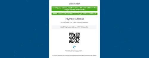 Elon Musk scam-site