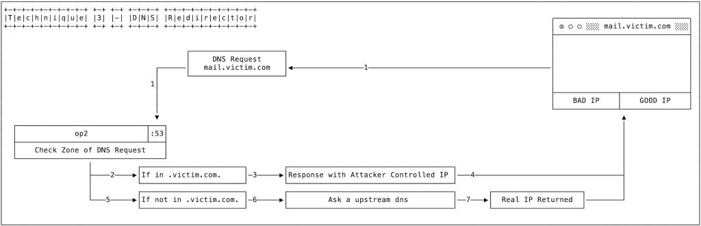 DNS hijacking 3