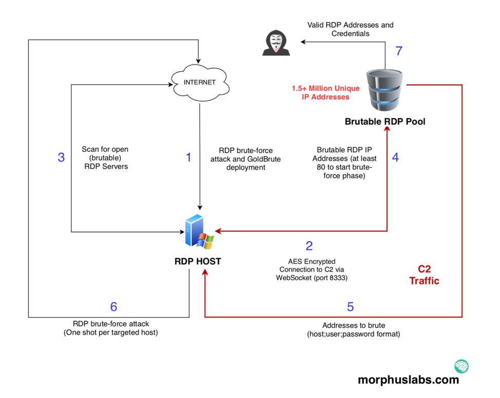 GoldBrute botnet