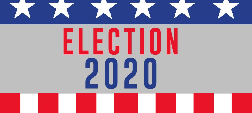 2020 us election