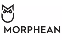 Morphean present video surveillance solution