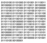 A Guide to Binary Numbers