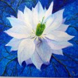 Love-in-a-mist is the name of this flower (Latin name: Nigella damascena) Painted in Acrylics on Canvas, with a fabric petal, and bead detailing. Unframed.