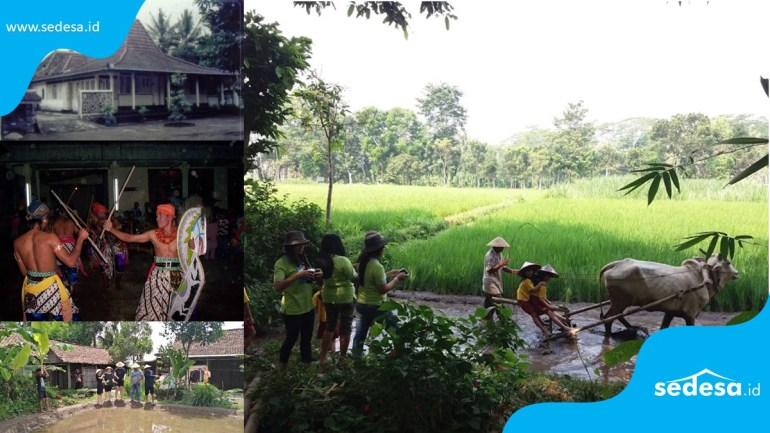 Desa Wisata Tanjung Yogyakarta