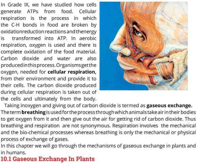 10th-Biology-textbook-page-1