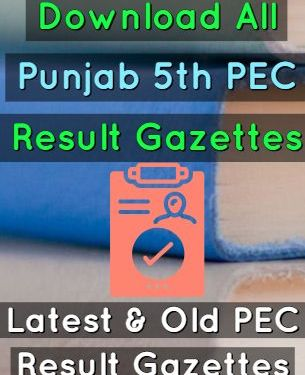 Download 5th Class PEC Result Gazettes 2019 All Punjab Districts
