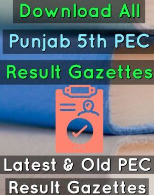Download 5th Class PEC Result Gazettes 2012