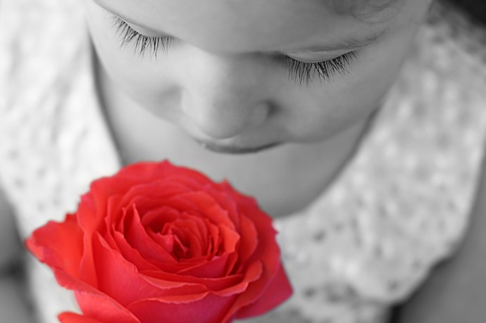 Children benefit from the aroma of rose