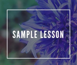 certificate in holistic aromatherapy sample lessons