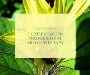 CERTIFICATE IN professional AROMATHERAPY