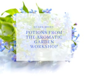 Potions from The Aromatic Garden Workshop