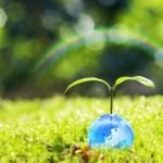 環境・師匠・仲間・・・、せどりや情報発信をやるうえで知識・ノウハウ以上に大事!