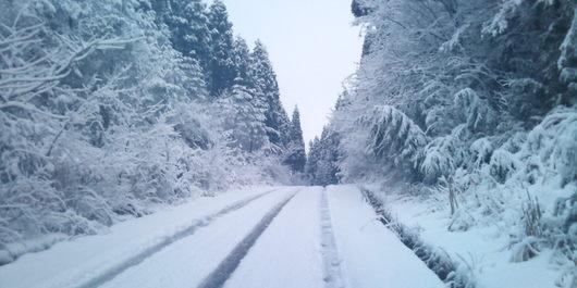 【71.覚悟】雪の中に立ち続ける少年【せどらーのつぶやき】