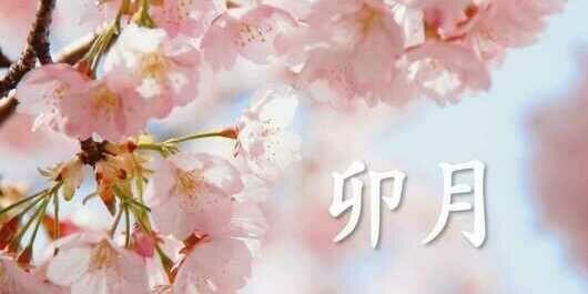 【84.卯月】新年度の始まり~再び気を引き締めるチャンスは今~