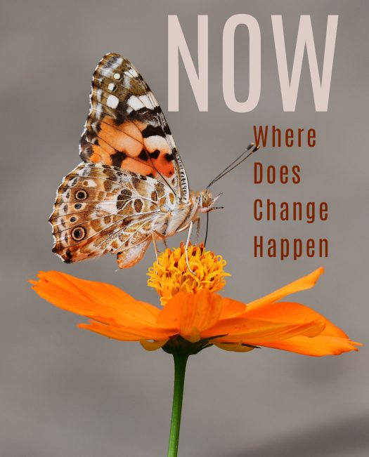 Now, Where Does Change Happen | Sedruola Maruska