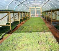 Lower Leigh Farm
