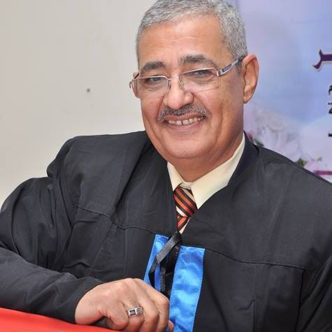 Dr. Abdel-Basset Seddik, Professor at the Department of Health and Mathematical Sciences at the Faculty of Physical Education at Alexandria University