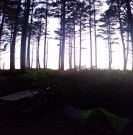 My campsite, see the dark little tent and bike? The ocean is behind those trees at Cape Lookout