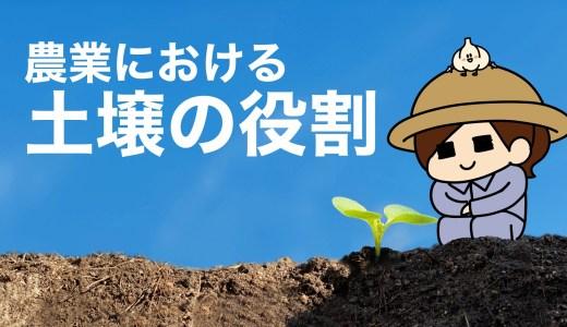 農業における土壌の役割