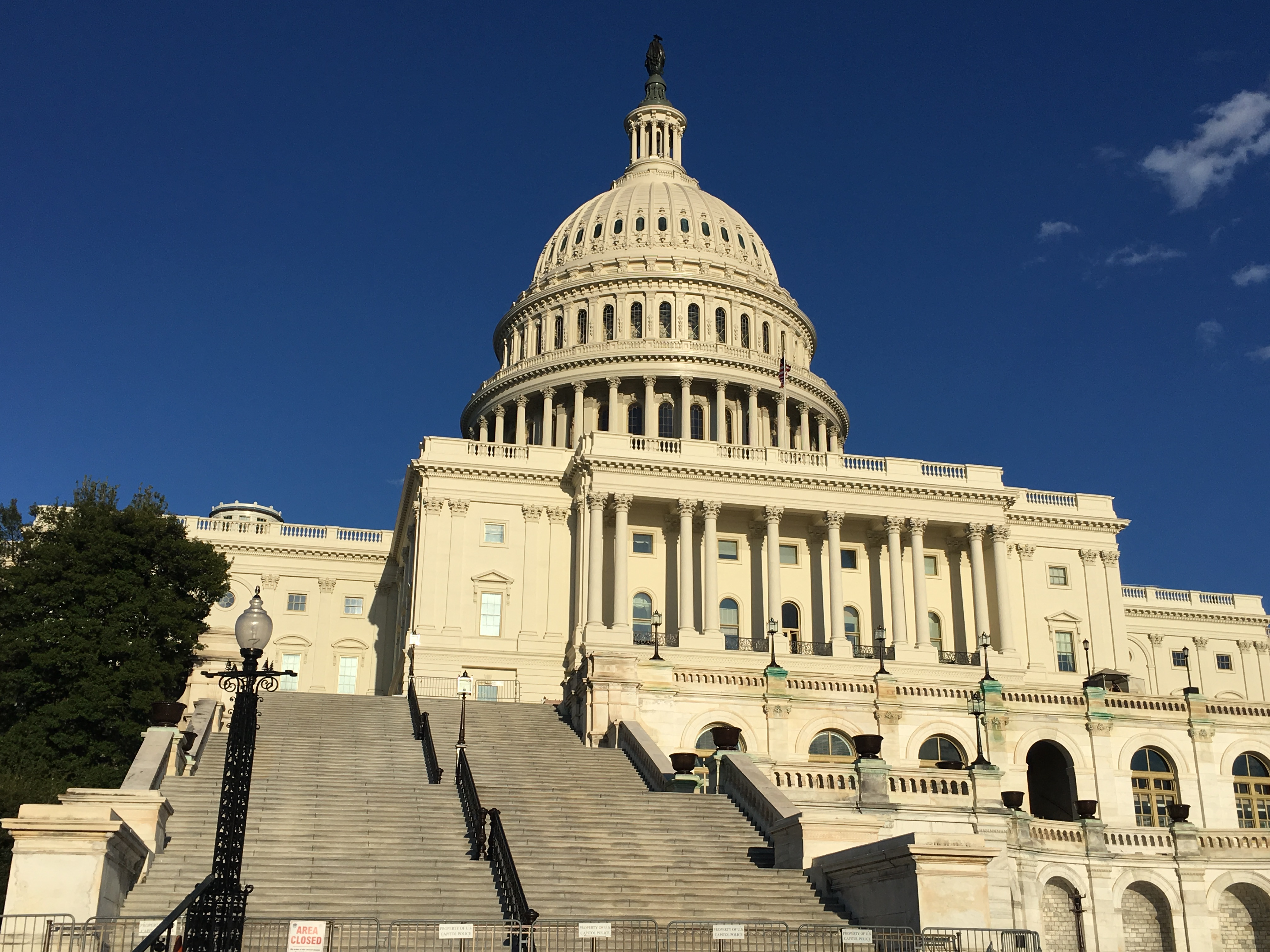 Congress Can Do Better On Gmo Labeling